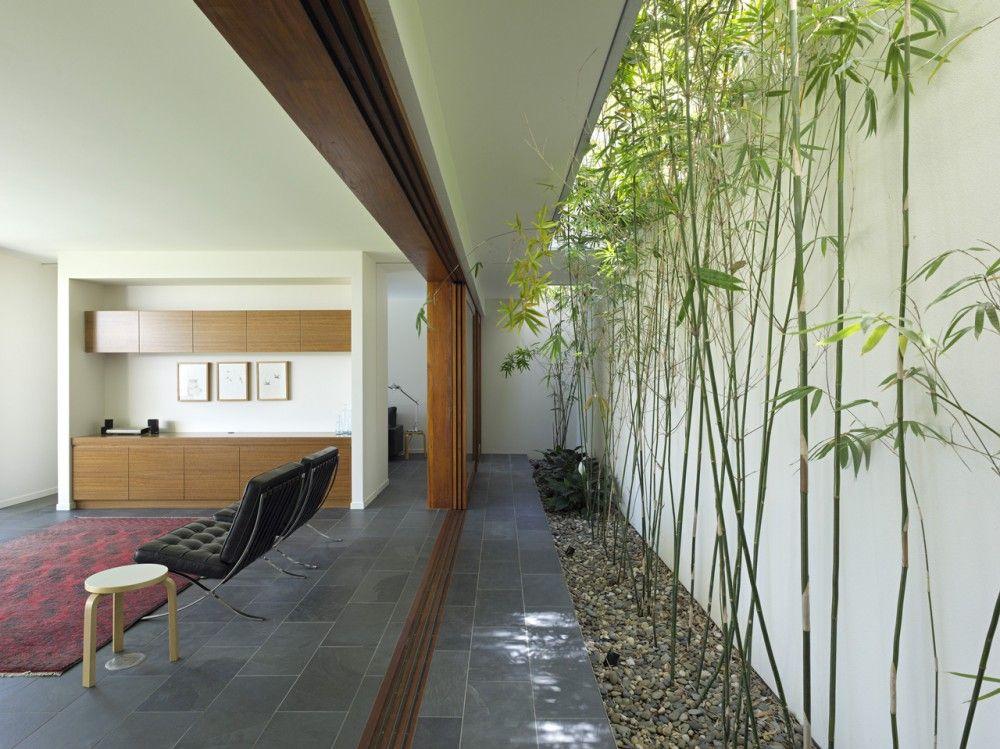 Fig Tree Pocket House 2, long linear bamboo courtyard opening - Shane Plazibat Architects