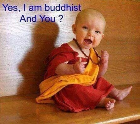 Bald baby Halloween DIY costume Tibetan monk or the dalai lama.  sc 1 st  Pinterest & Yes i am buddhist. :-) | cute quotes | Pinterest | Buddhists