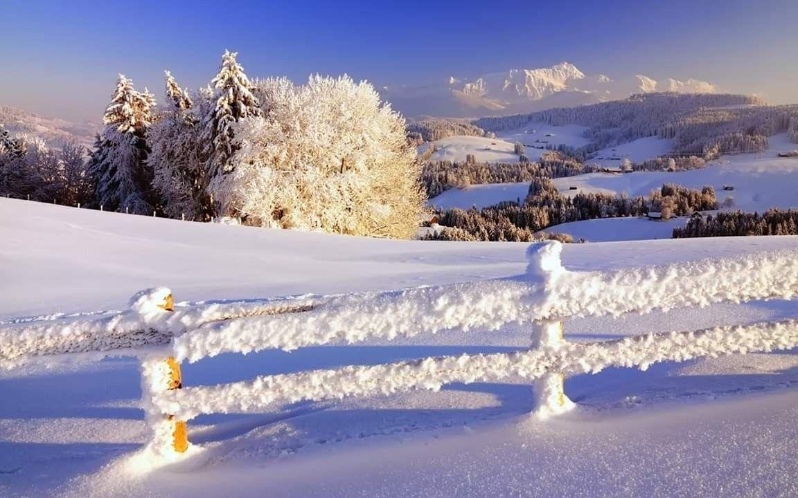 Pin Auf Snowy Day
