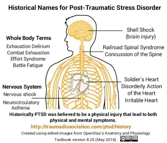 the effects of posttraumatic stress disorder essay Bailey 4 origins and causes of ptsd post-traumatic stress disorder (ptsd) is a diagnosis in the diagnostic and statistical manual of mental disorders 4th edition (dsm-iv).