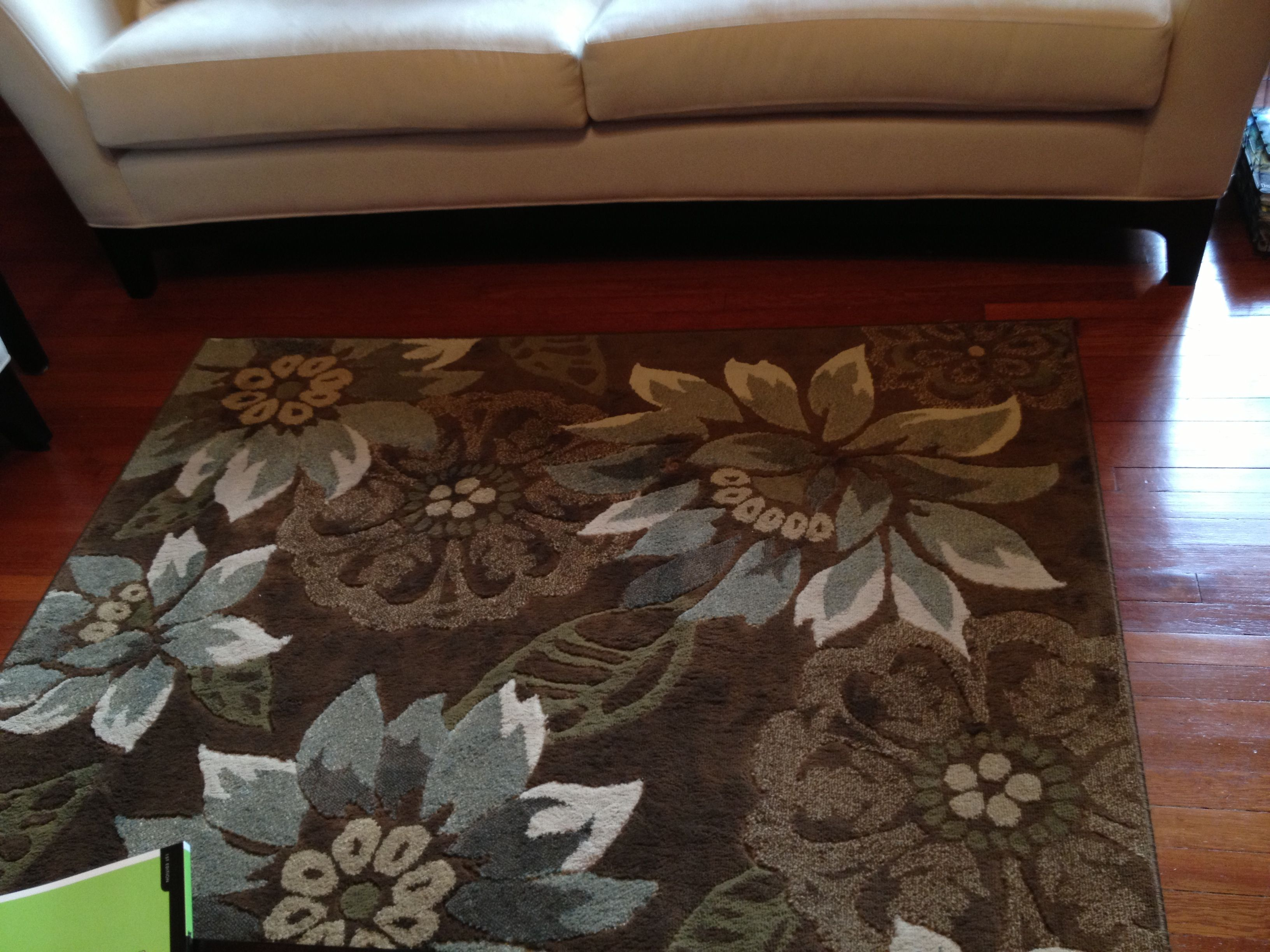 Current Area Rug In Living Room Colors Are Brown Ivory