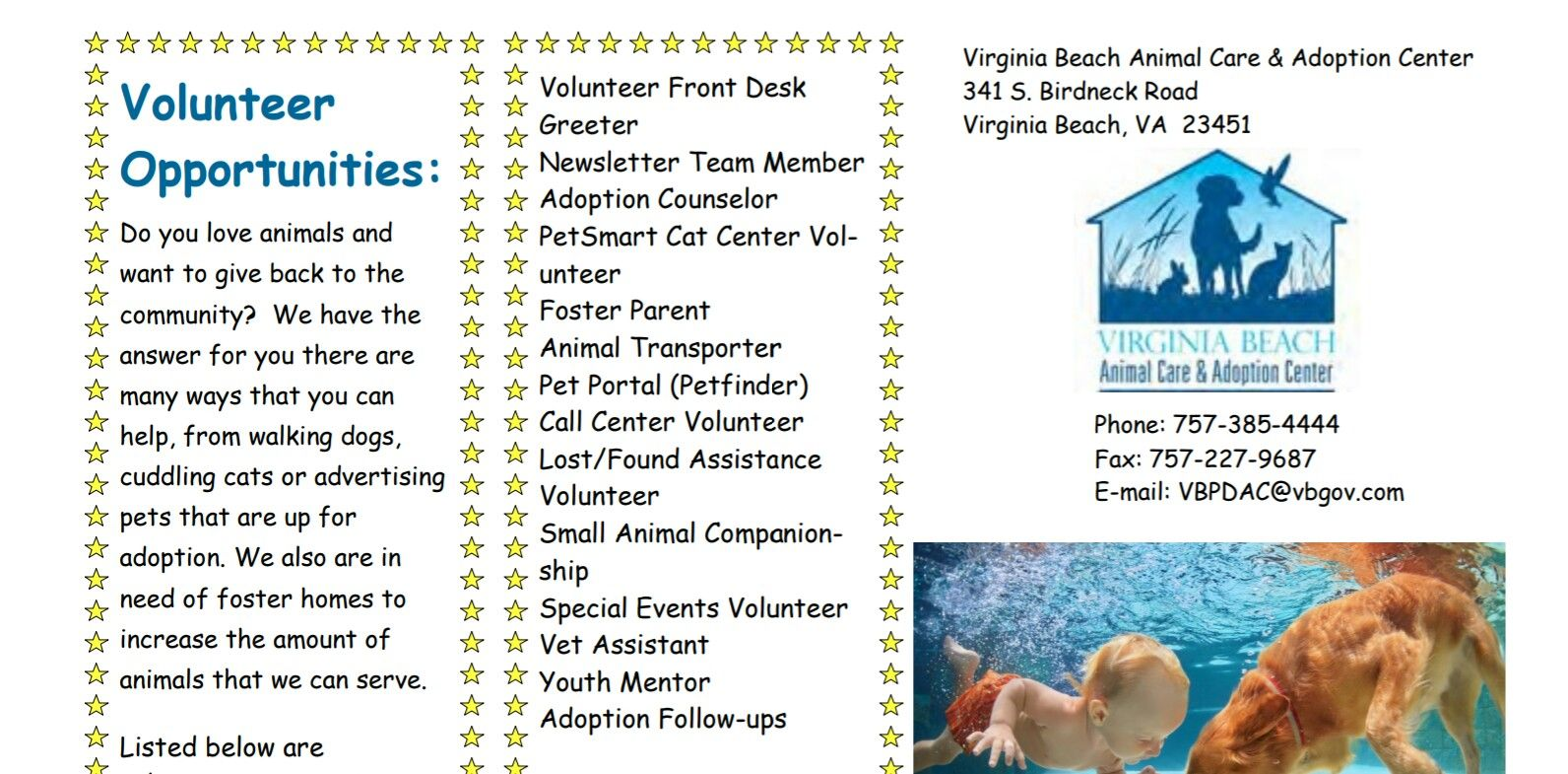 Volunteer Opportunities At The Shelter Foster Parenting The Foster Volunteer