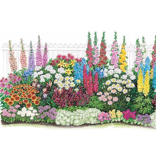 - Endless Bloom Perennial Garden | Endless blooms ...