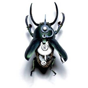 dead insects, filled with antique watch parts.
