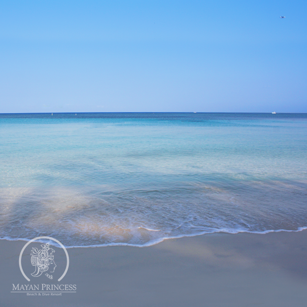 Crystal blue water. #Roatan
