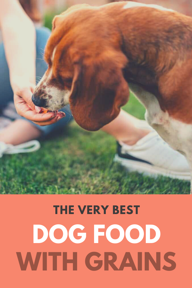 7 Best Dog Food With Grains Why Non GrainFree Dog Food