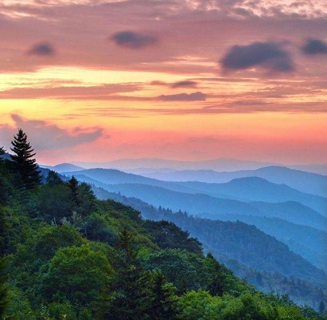 Great Smoky Mountains ~ Trail Wandering via Instagram