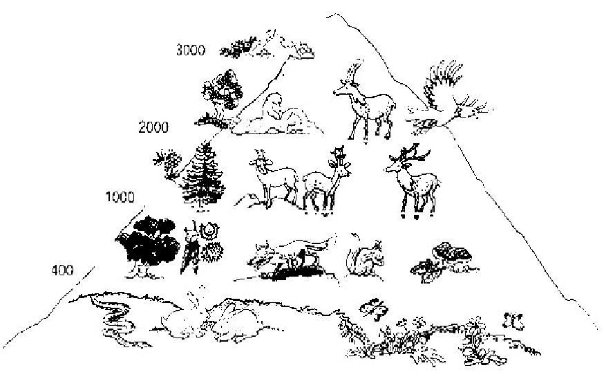 Definizione caratteristiche origini mutamenti clima - Immagini da colorare delle montagne ...