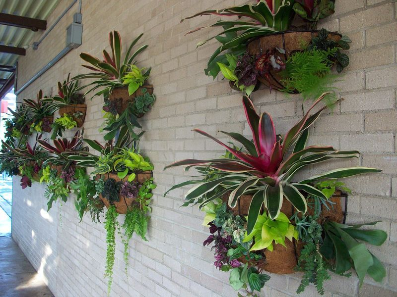 Focal Wall Planters With A New Twist Wall Planter Plants Vertical Patio Garden