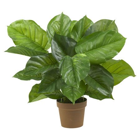 Silk philodendron plant.  Product: Faux plantConstruction Material: Silk and plasticColor: Green...