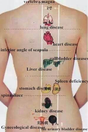 Pin by PETER KOJO on Acupuncture point | Acupuncture ...