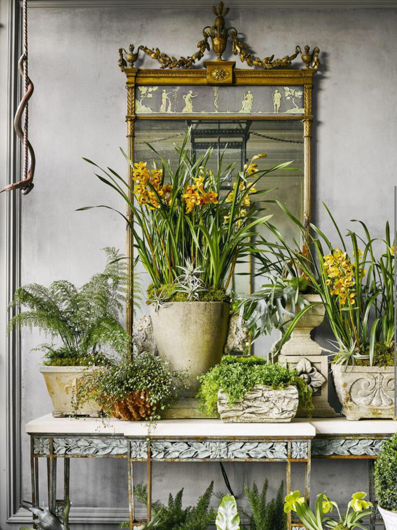 Patios floral shops indoor plants flowers gardening also celebrate decor ideas garden rh pinterest