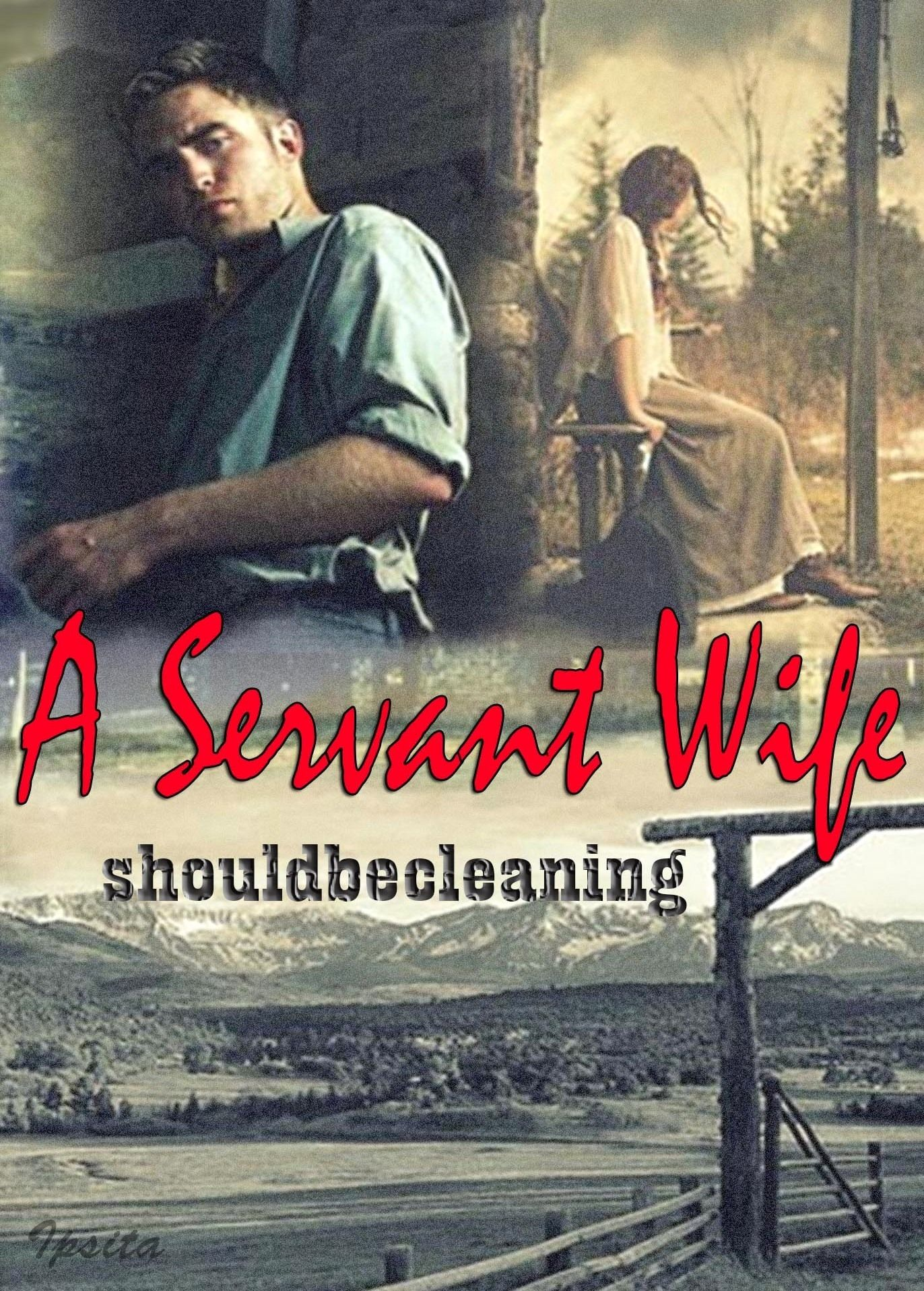 the silent wife book synopsis
