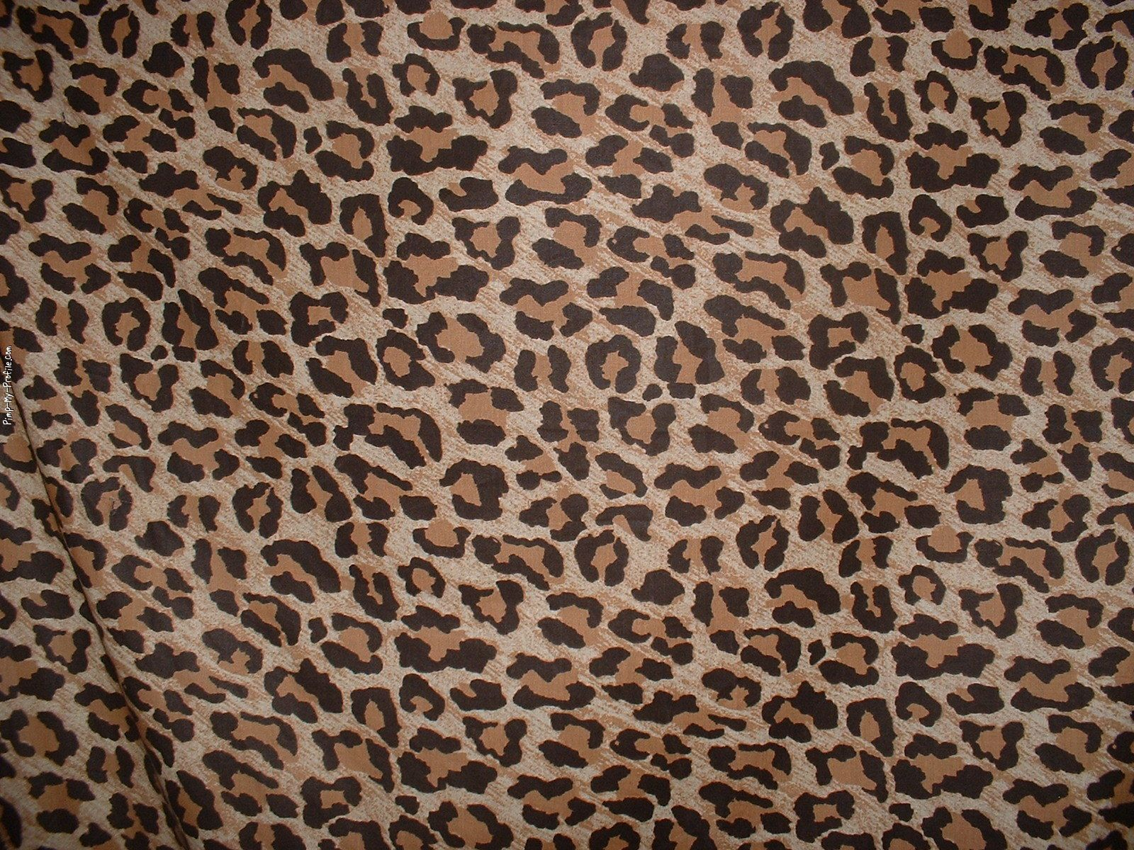White Heart Leopard Print Twitter Header - Animal Print Wallpapers