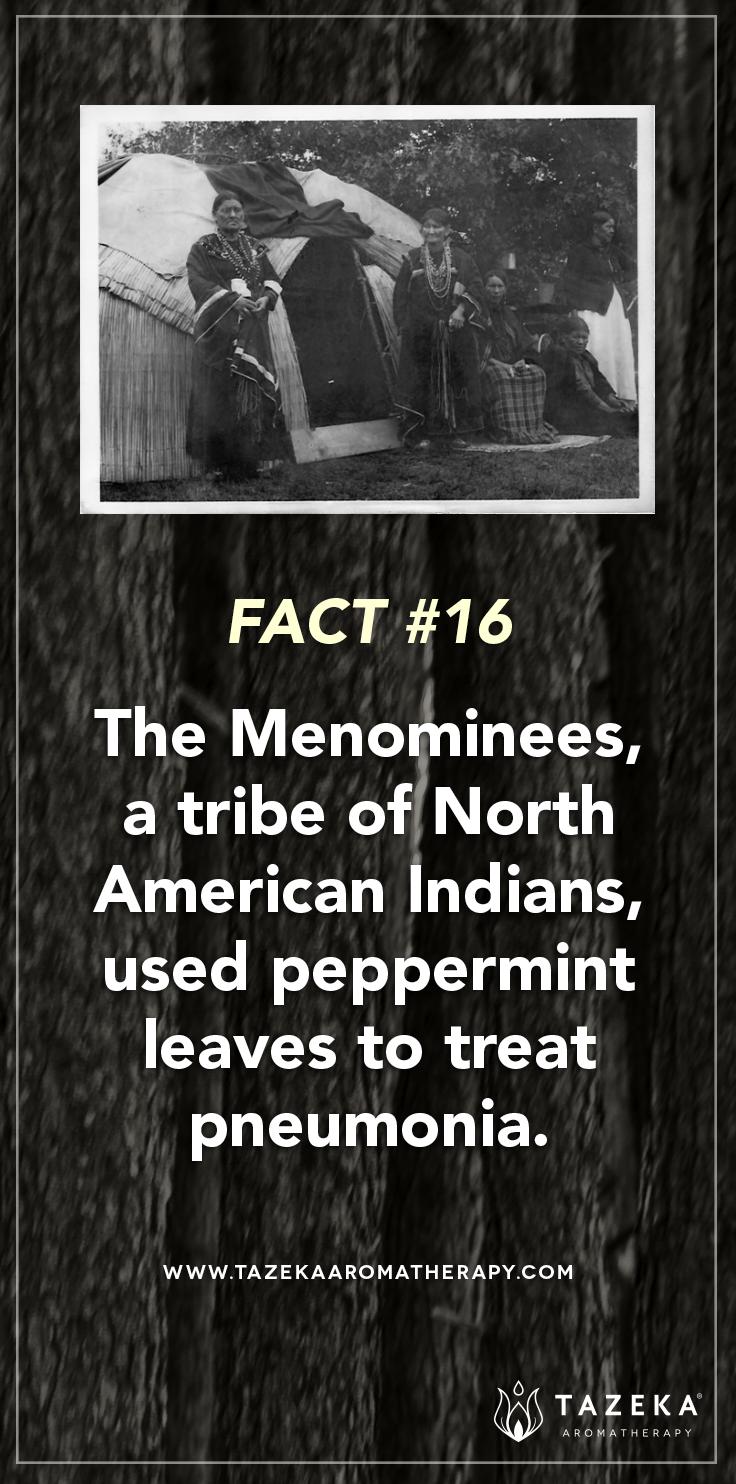 Fact No. 16 #TazekaFacts | (Source: The Art of Aromthareapy - Robert B. Tisserand)