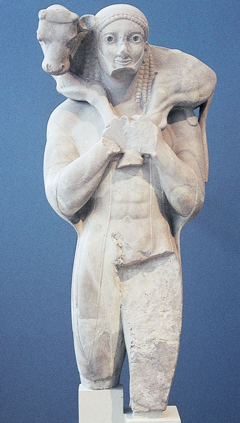Calf bearer, dedicated by Rhonbos on the Acropolis, Athens, Greece, ca. 560 BCE.  Marble, restored _ Acropolis Museum, Athens.