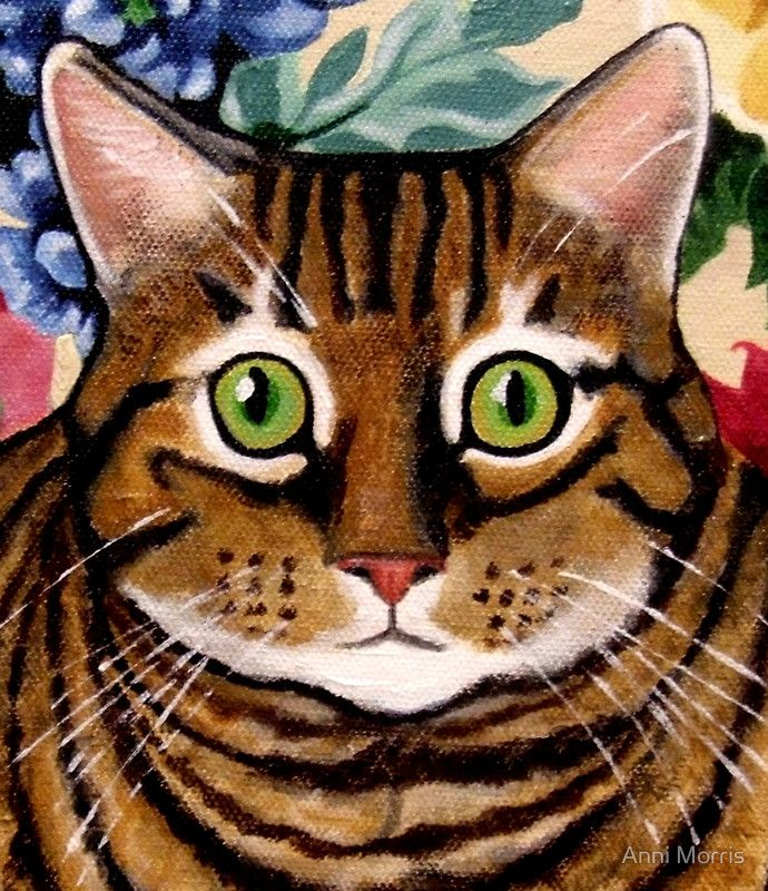 """Tawny Tabby Portrait"" Photographic Prints by Anni Morris 