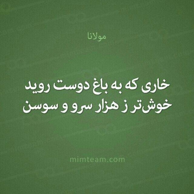 مولانا Bio Quotes People Quotes Favorite Quotes