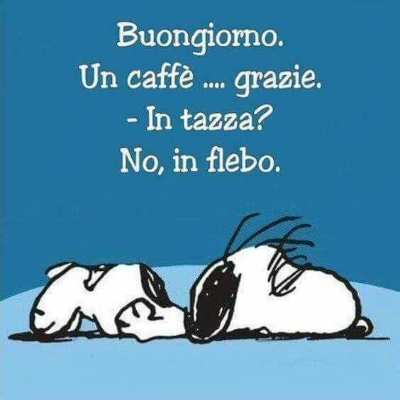 Pin di francesca nota su motti pinterest good morning for Buongiorno sms divertenti