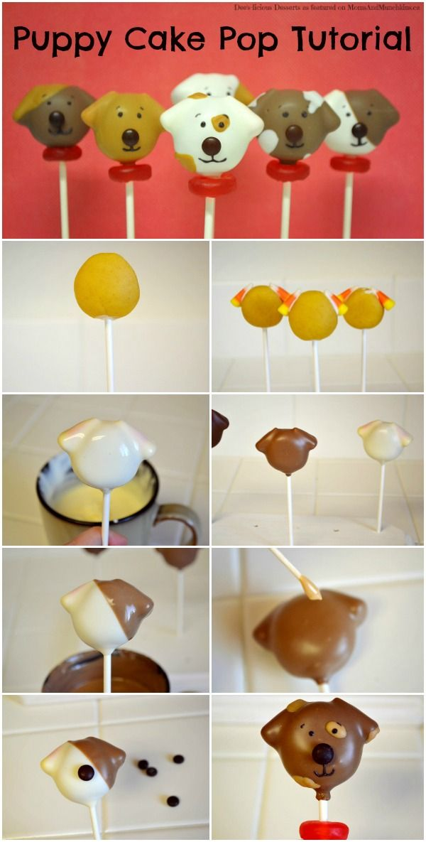 Decorating Cake Pops Easy : Dog Cake Pops Tutorial Puppy cake, Cake pop tutorial and ...