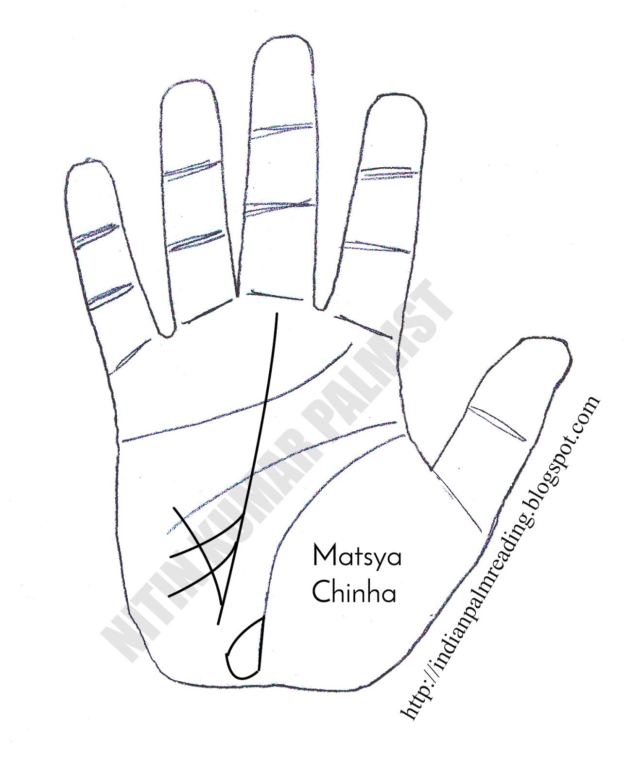 indian palmistry palm reading secrets revealed aries astrology learning palms [ 1284 x 1600 Pixel ]
