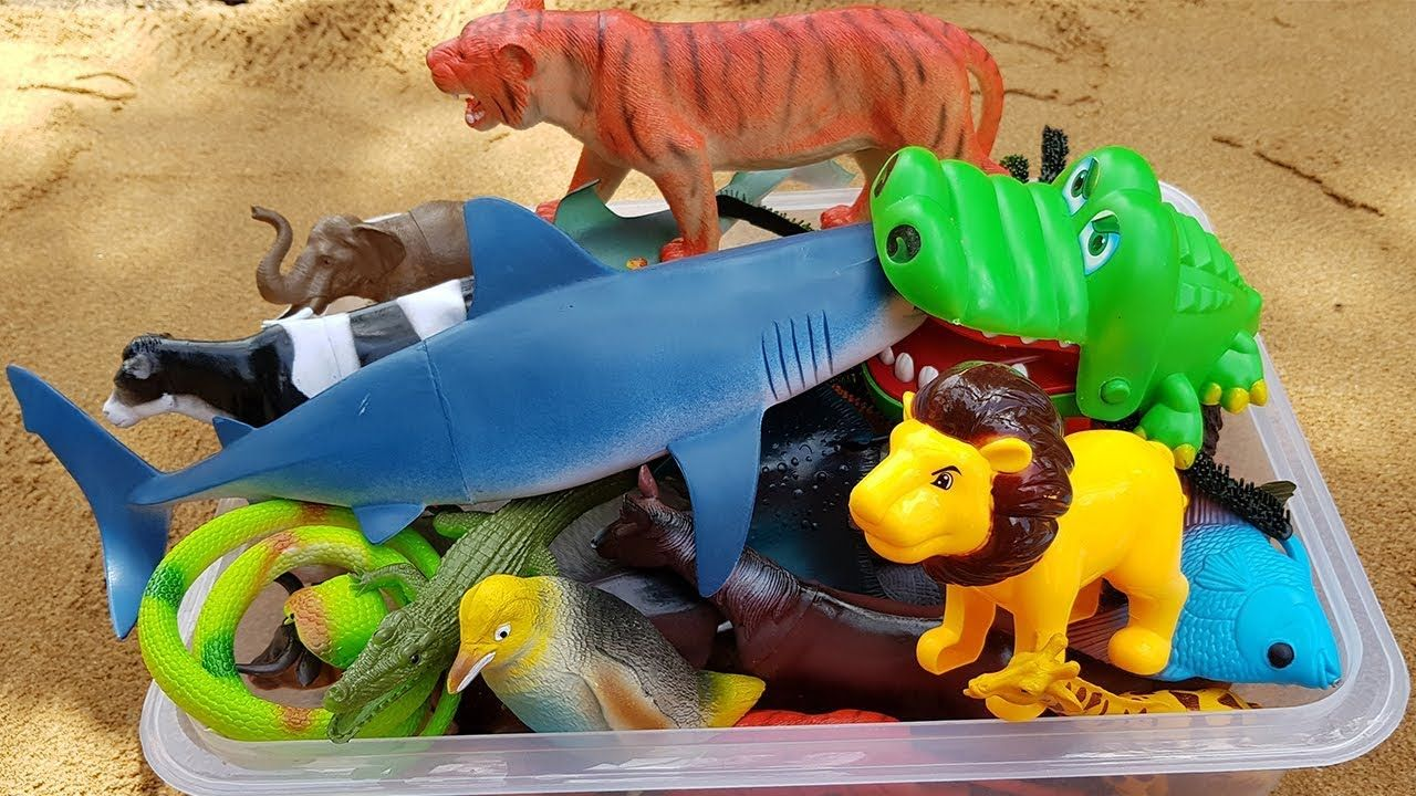 Toys images with names  Learn Animals Names and Wild Animals Names Learning Video for Kids