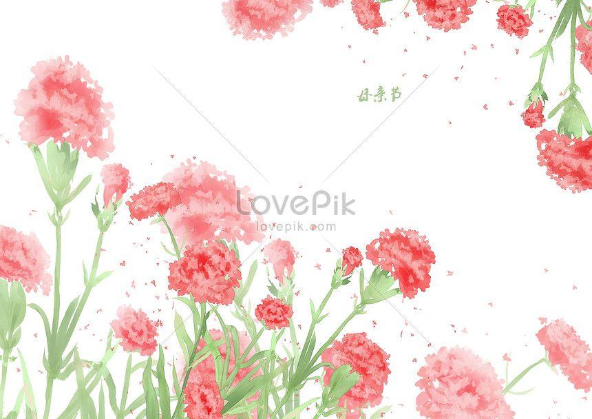 엄마가 날 꽃 장식 카네이션 어머니 디자인 배경 꽃 요소 재료 국경 장식 명절 꽃잎 잎 핑크 카네이션 사자 머리 카네이션 Mothers Day Template Design Carnations
