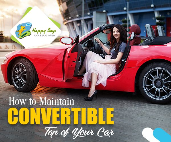 Cleaning convertible tops a car servicing necessity car detailing cleaning convertible tops a car servicing necessity solutioingenieria Choice Image