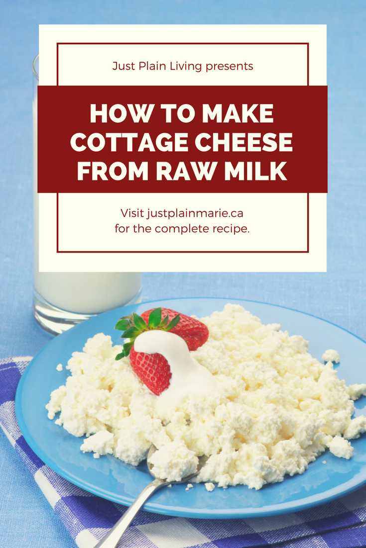 How To Make Homemade Cottage Cheese Homemade Cottage Cheese Cottage Cheese Recipes Cottage Cheese Nutrition