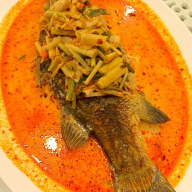 レシピとお料理がひらめくSnapDish - 65件のもぐもぐ - ปลากระพงนมสด by みい