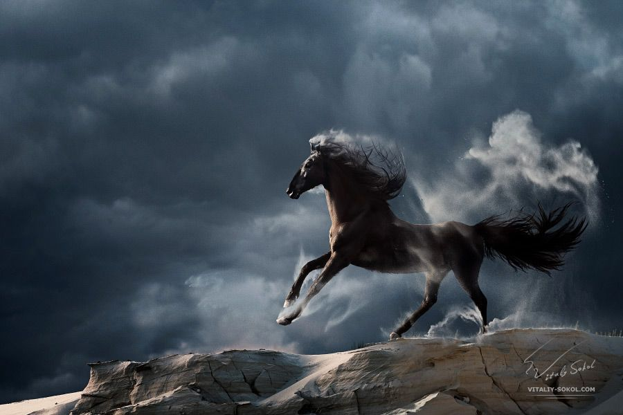 Wuthering Heights by Vitaly-Sokol on DeviantArt