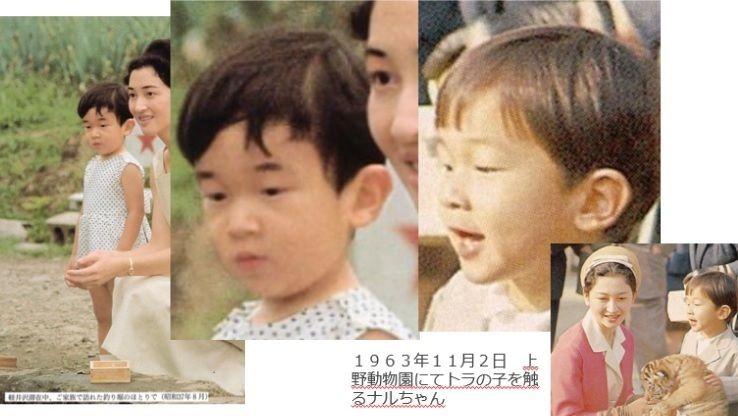 「徳仁1号」の画像検索結果