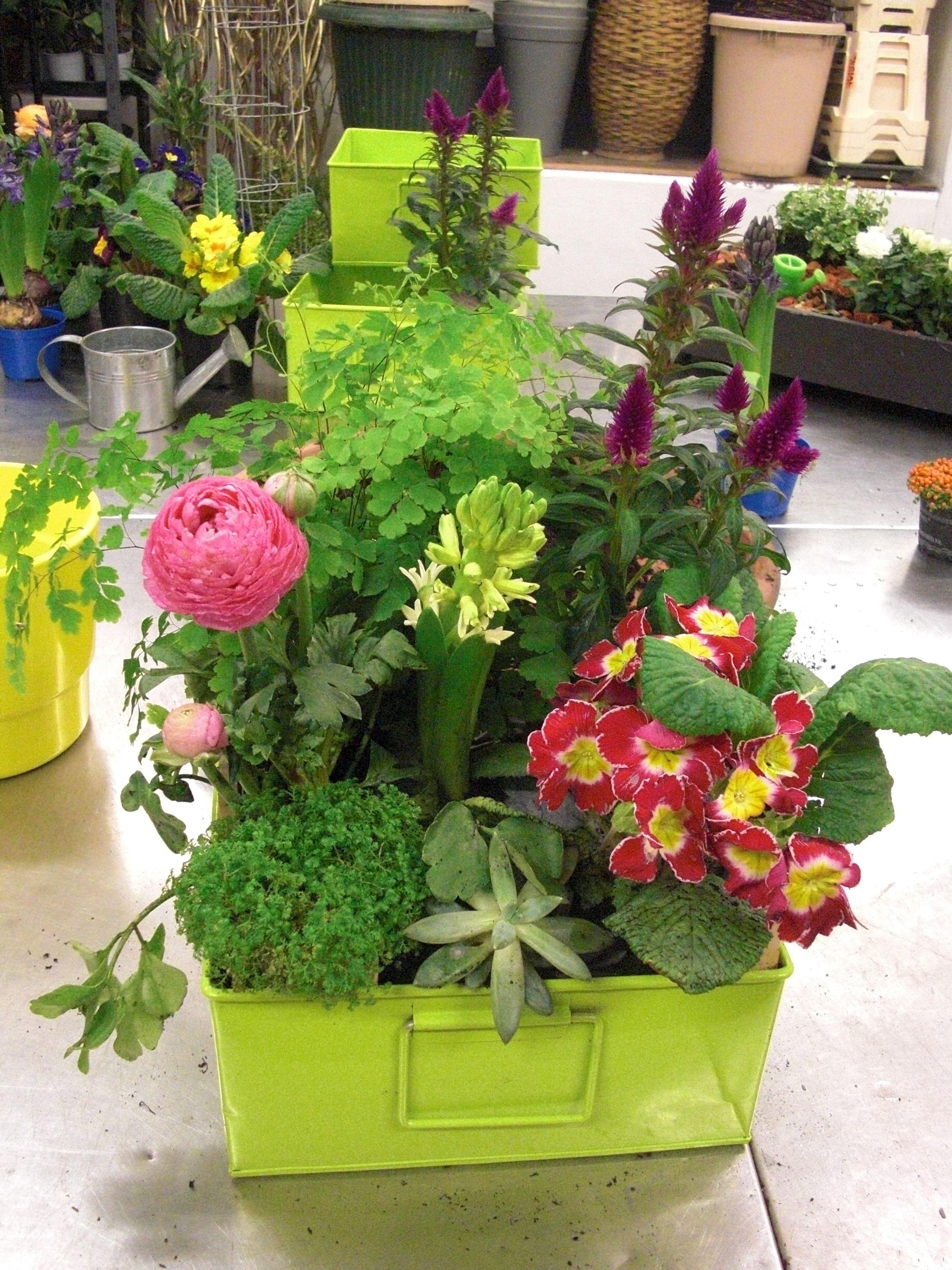 Atelier Floral Aquarelle Com Jardiniere De Printemps Aquarelle