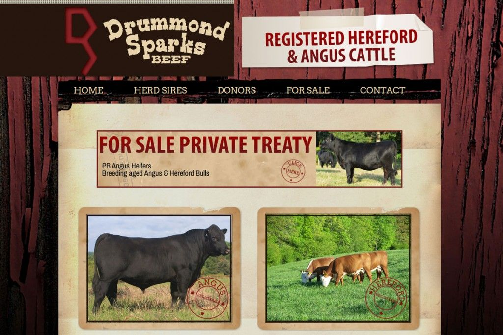 Drummond Sparks Beef Registered Hereford Angus Cattle