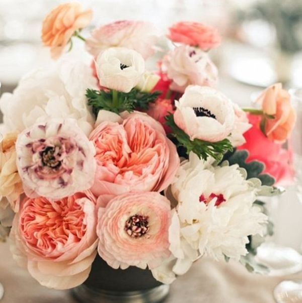 our favorite pins instagrams - Garden Rose And Peony