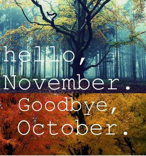 Risultati immagini per happy november