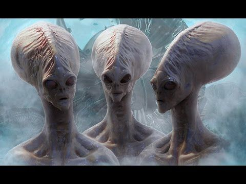 Alien Species - Types Of Real Aliens On Earth (Special Documentary .