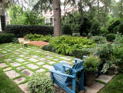 stone terrace planted with mazus