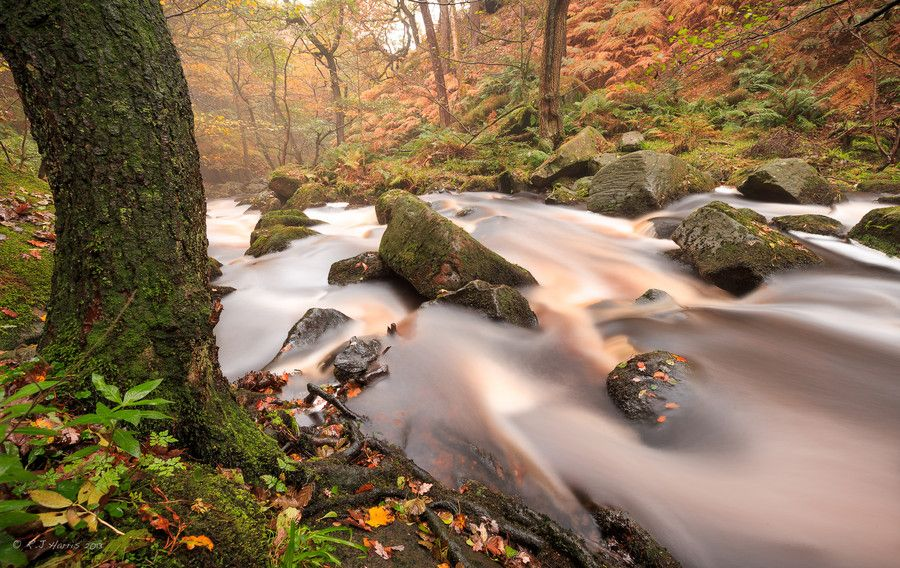 Autumn Stream by Rob Harris on 500px