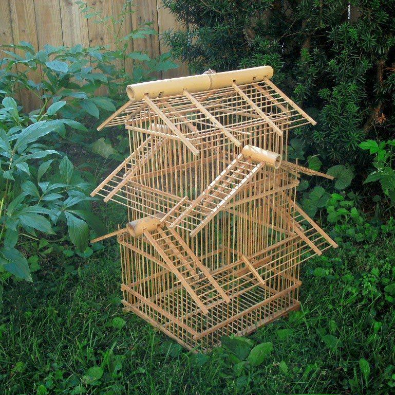 Bamboo Bird Cage Kit