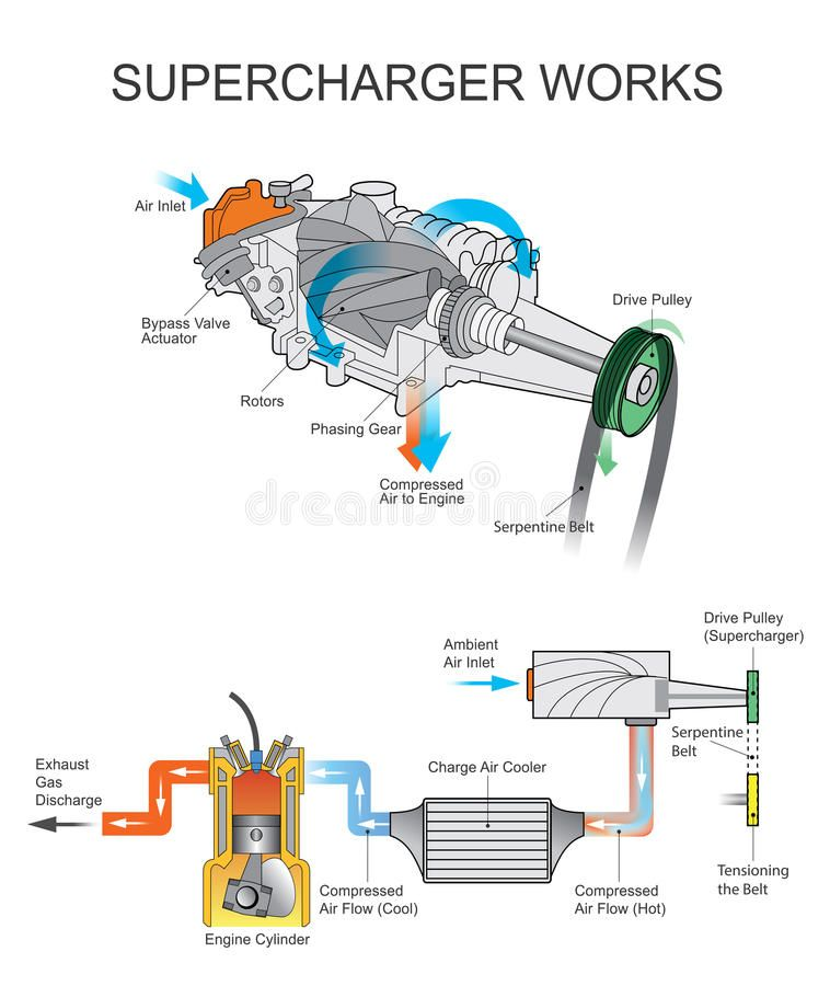 Supercharger Works Illustration About Rotors Direct Pump Intercooler Pulley Serpentine Engine Automobile Engineering Automotive Mechanic Supercharger