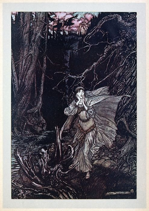 Bertalda In The Black Valley A Rackham From Undine By De La Motte Fouque London 1909 Vintage Art Prints Illustration Vintage Illustration