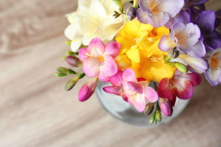 Die 10 Schonsten Duftpflanzen Fur Garten Balkon Pflanzen Garten Blumen Blumenstrauss