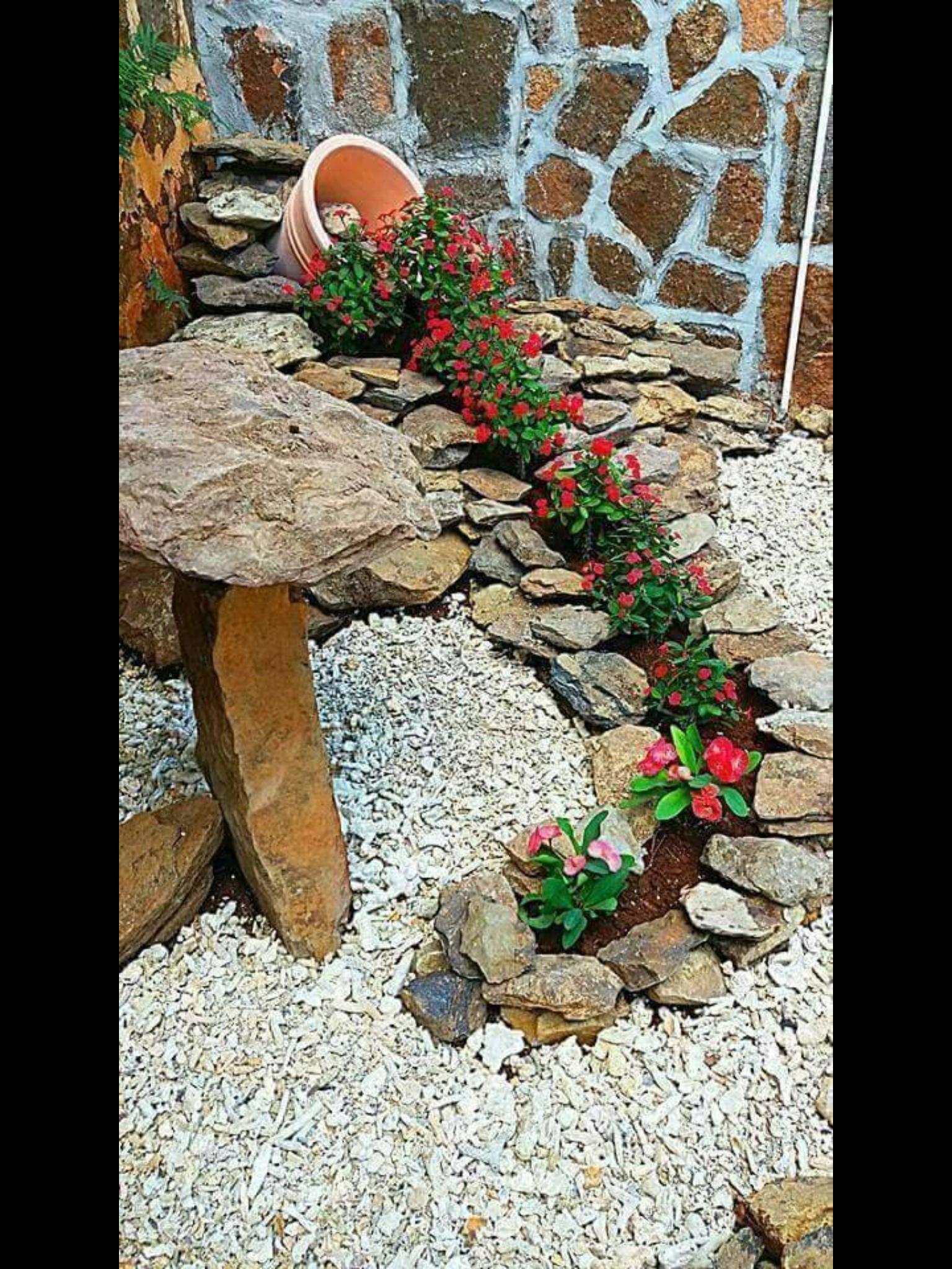 Jardin Jardines, Jardinería en macetas y Jardinería
