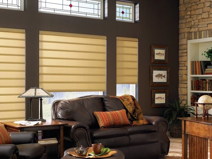 A Chocolate Colored Accent Wall Design Ideas By Window