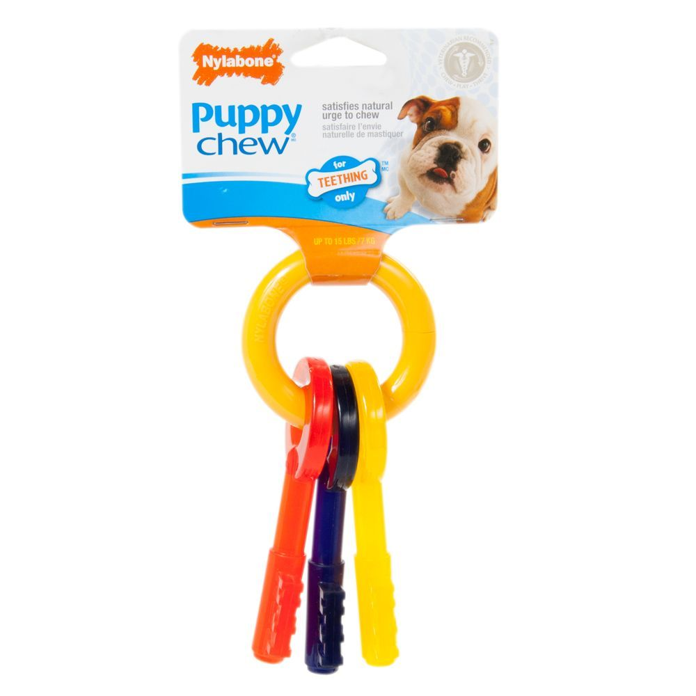 Nylabone Puppy Teething Keys Chew Dog Toy Size X Small Ivory