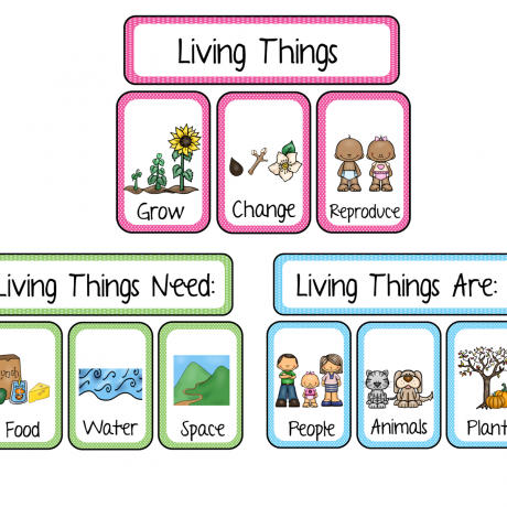 Science Worksheets For Grade 1 Living And Nonliving Things Sunny