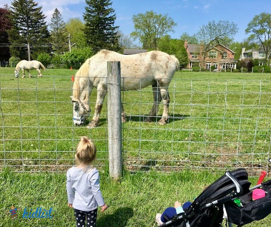 Local Farms to Visit with Kids in the Chicagoland Area