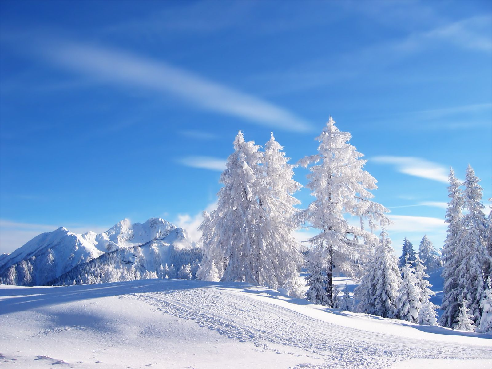This Is What Narnia Looks Like In My Brain Winter Landscape Winter Nature Landscape Wallpaper
