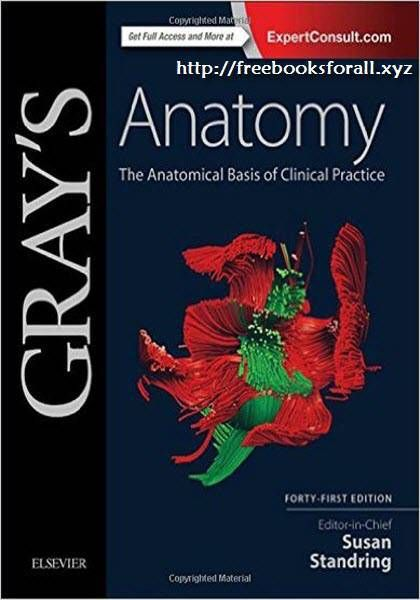 Grays Anatomy 41st Edition Pdf Ebook Free Download The Anatomical